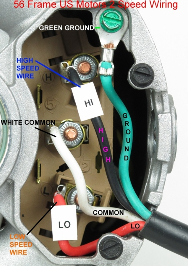 Pool Pump Wiring Diagram : Speed v fr a spa pump motor