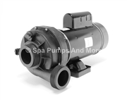 6500-258 TheraFlo Spa Pump 3:00 2-speed Thera-Flo