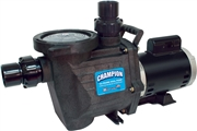 "CHAMPS-220 Champion Waterway Inground Swimming Pool Pump 56fr 2.0 hp 11.0 / 4.0 Amp 230v, 2"" 2 speed"
