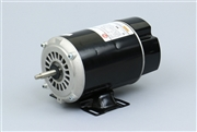 Waterway pump motor Century Motor 115V 12A One Speed 48fr BN25, BN25, 7J06, 0-177894-24, LR4642, E44549