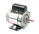 Motor, Circ Pump, 115 volt, single speed, 1725 RPM