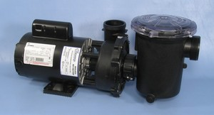 Waterway pool pump with leaf trap,  by Waterway Plastics