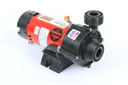 Waterway Tiny Might Pump TM0061N11C30 3312610-14