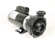 Waterway Spa Pump 342122110 3421221-10 SD-30-2N22CE, PF-2NMF, R55MWFBZ-0293