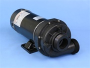 "6500-269 TheraFlo Spa Pump 1-speed 48 frame 230V/10A 115V/20A 2"" SD/CS replacement for Sundance & Jacuzzi, 6500-769"