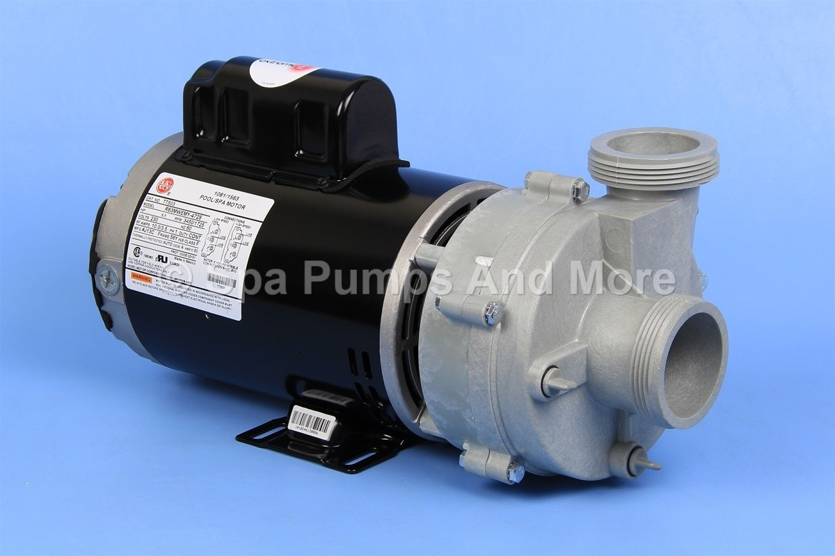Puumsc2402582f Replacement Energy Efficient Spa Pump 230v 8a 56fr 2 Cs 1016030  1016039