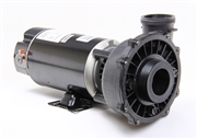 Waterway Spa Pump Executive PF-20-1N12C4 3410830-13 P120E425201224 341083013